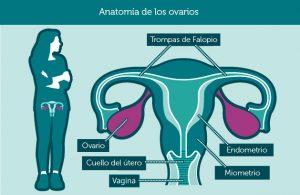 Imagen de http://ovariancancerday.org